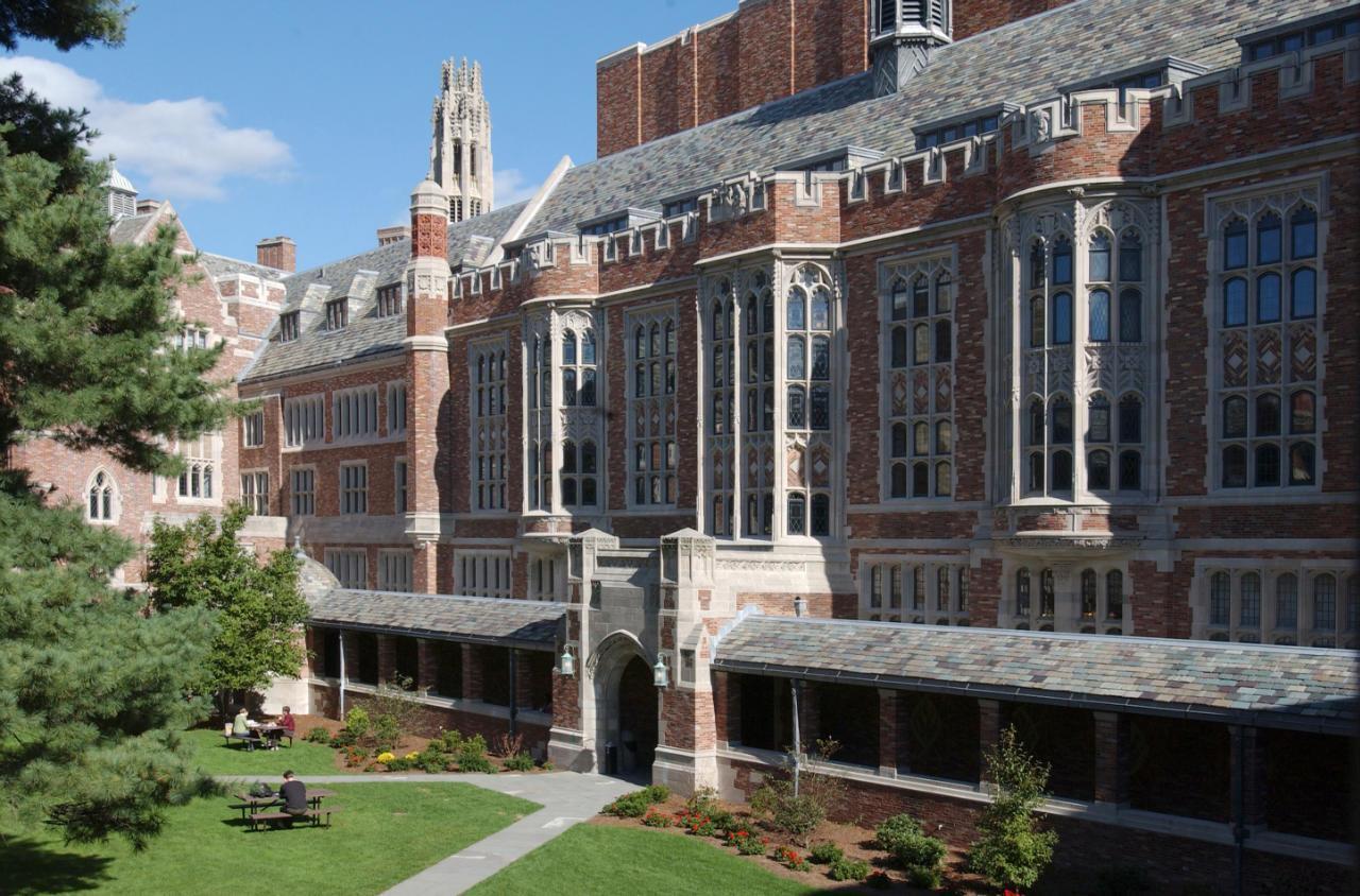 university of new haven application essay